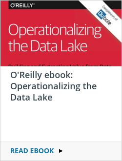O'Reilly ebook: Operationalizing the Data Lake