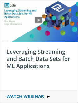 Leveraging Streaming and Batch Data Sets for ML Applications