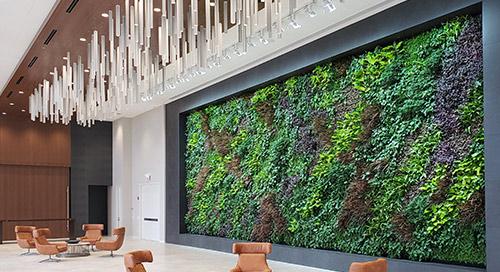 Sagegreenlife Uses IoT Network to Keep Living Walls Green