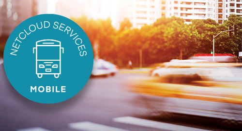 Mobile Network Services Brochure APAC