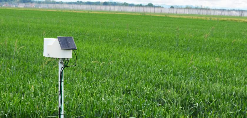 champ agricole ouvert en Saskatchewan avec capteur IdO actif