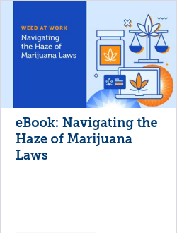 eBook: Navigating the Haze of Marijuana Laws