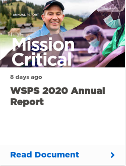 WSPS 2020 Annual Report