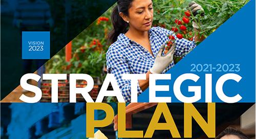 WSPS Strategic Plan 2021-2023
