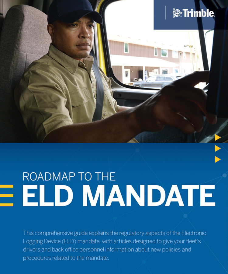 Roadmap to the ELD Mandate