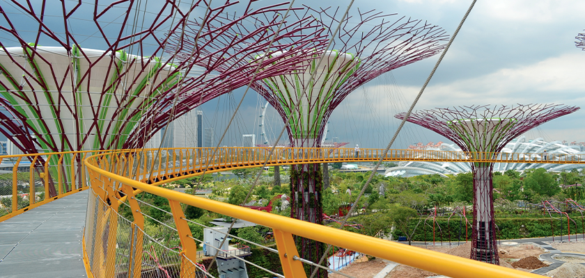View along the OCBC Skyway, a 128m long suspension bridge that links two of the taller trees together 22m above the ground