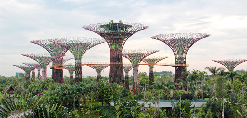 A view of Gardens by the Bay in Singapore upon completion