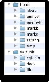svn repository configuration