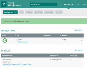 CloudForge in CloudFoundry Space