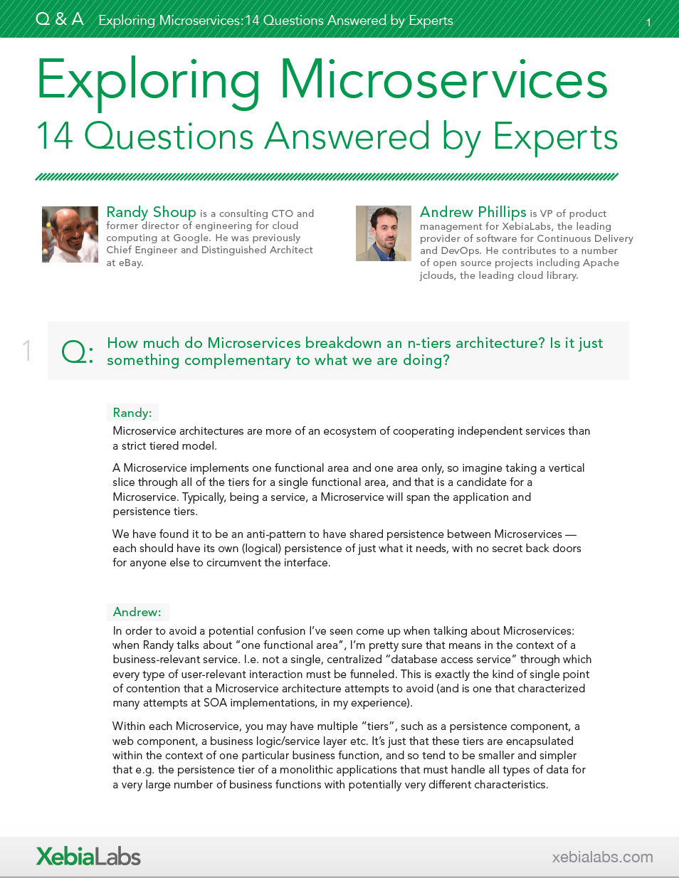 Exploring Microservices - 14 Questions Answered by Experts