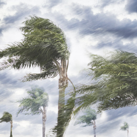 Preparing for the 2020 Hurricane Season