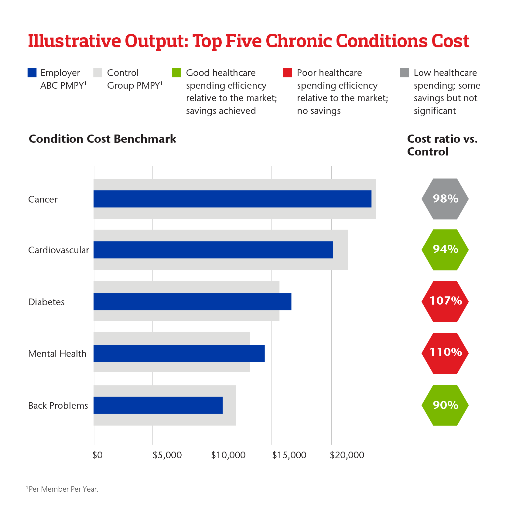 Illustrative Output: Top Five Chronic Conditions Cost