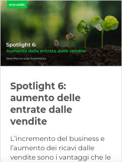 Spotlight 6: aumento delle entrate dalle vendite