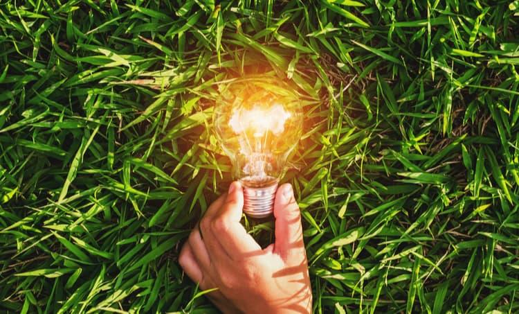 Lightbulb on the grass