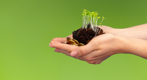 Fostering a greener Canada through sustainable investing: A conversation with alumnus Sean Sirois