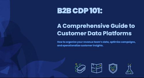 B2B CDP 101: A Comprehensive Guide to Customer Data Platforms
