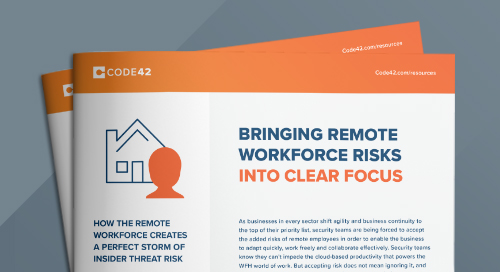 Bringing Remote Workforce Risks into Clear Focus