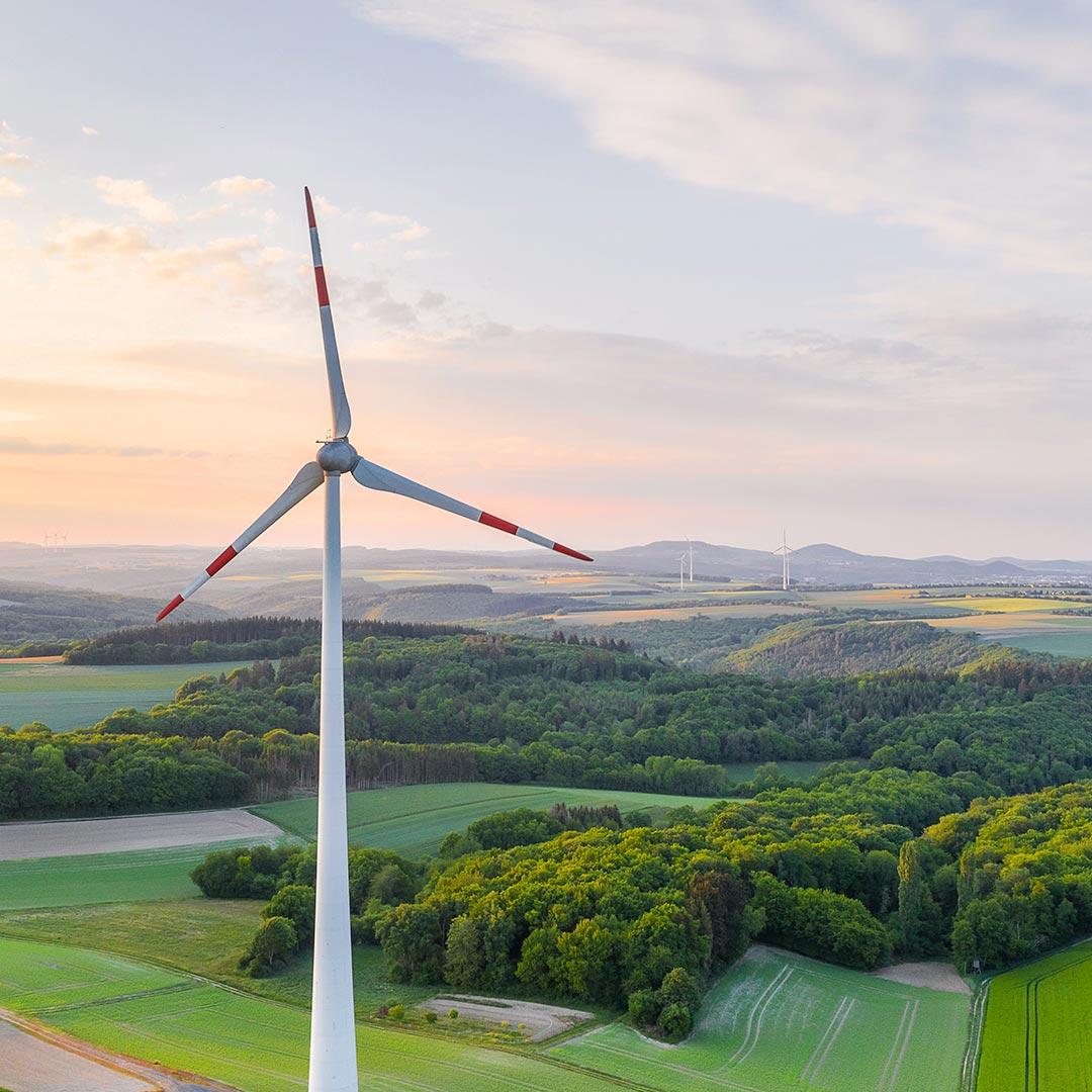 State of the European Renewable Energy Market