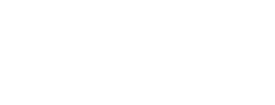 International Expeditions logo