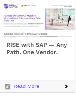 RISE with SAP — Any Path. One Vendor.