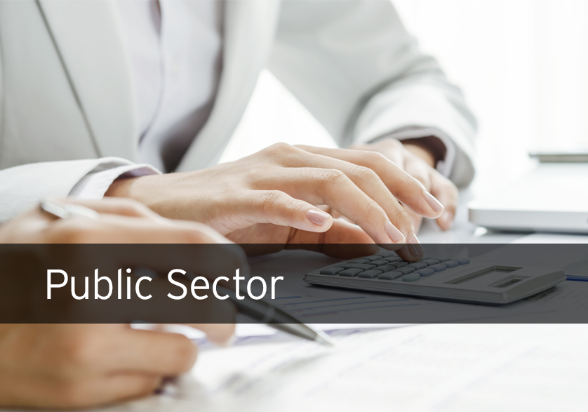 Financial & Public Sector