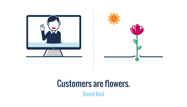A lead is a seed and customers are flowers