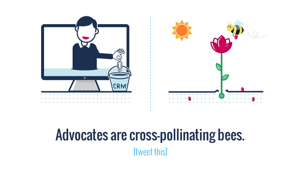 A lead is a seed and advocates are cross-pollinating bees