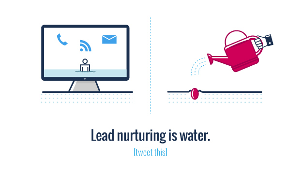 A lead is a seed and nurturing is water