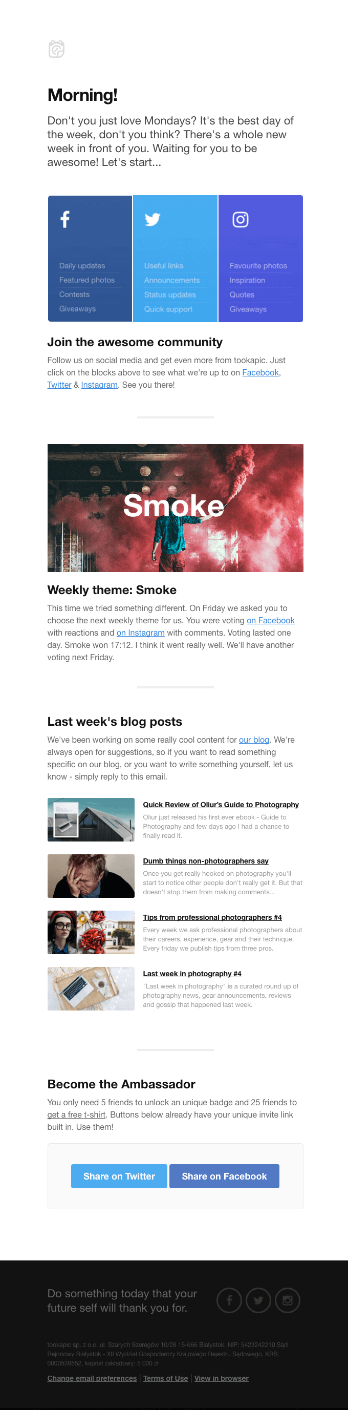 Tookapic's newsletter below provides a lot of updates such as previous posts, current theme, and social links all in one page.