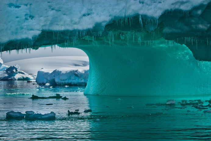 Icebergs, mountains and frigid waters offer myriad opportunities for spectacular scenic photography.