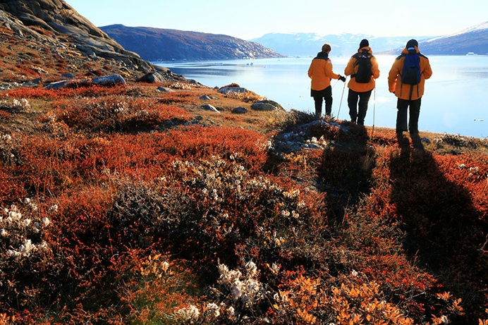 Passengers hike the colourful tundra in East Greenland. Photo Steven G. Denver