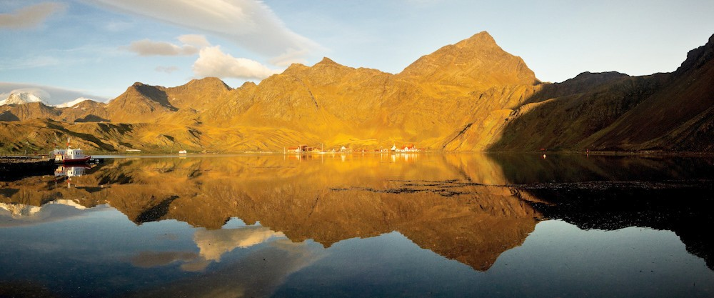 Grytviken on a summer morning