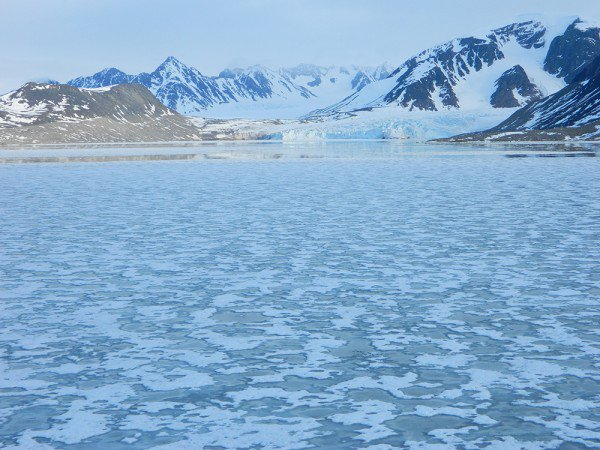 Help clean up Svalbard on your Arctic expedition in Spitsbergen.