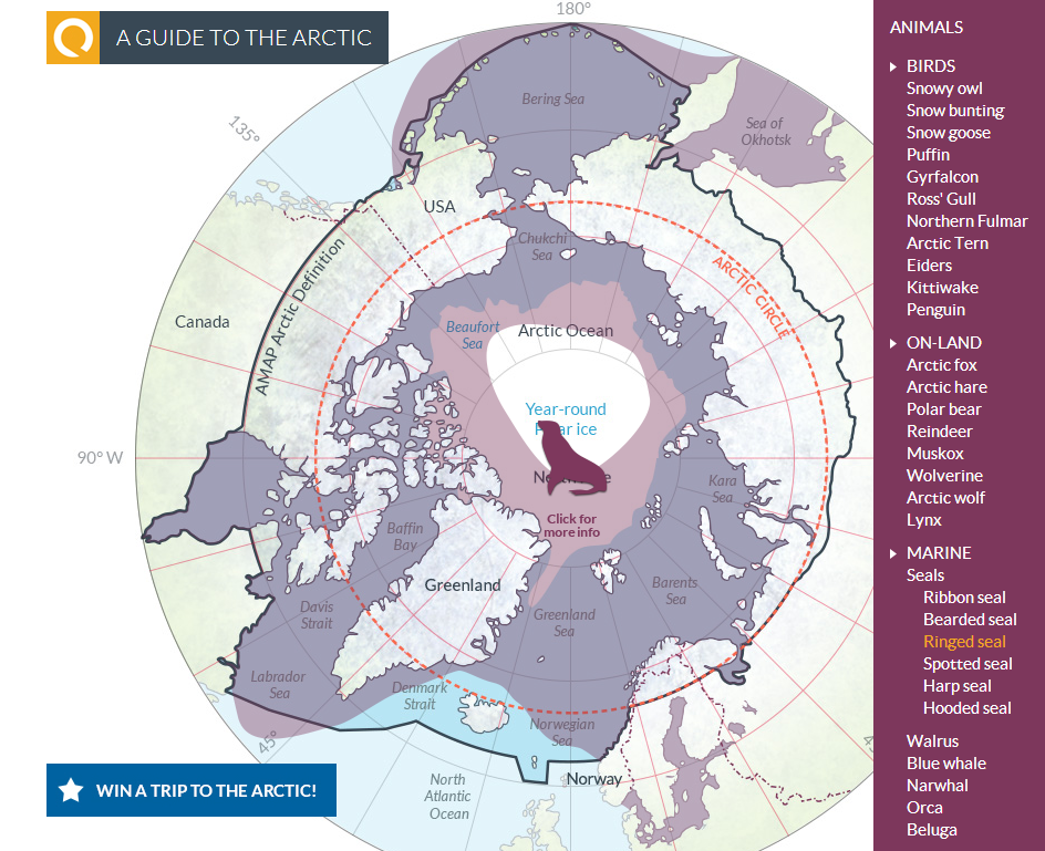 Arctic Game