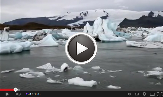 Video: Status and Trends of Arctic Biodiversity
