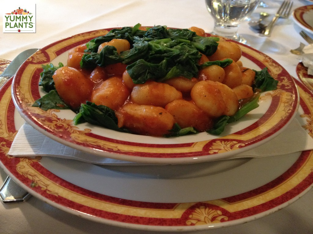 Gnocchi- Food aboard ship to Antarctica