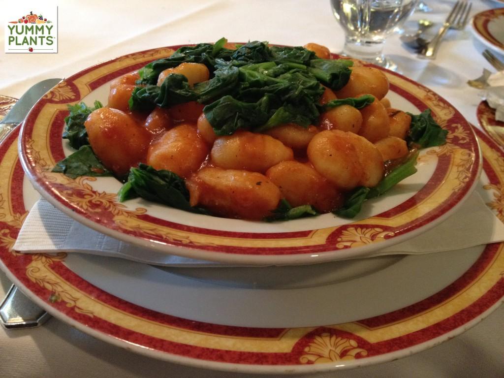 Gnocchi- Food aboard ship to Antarctica