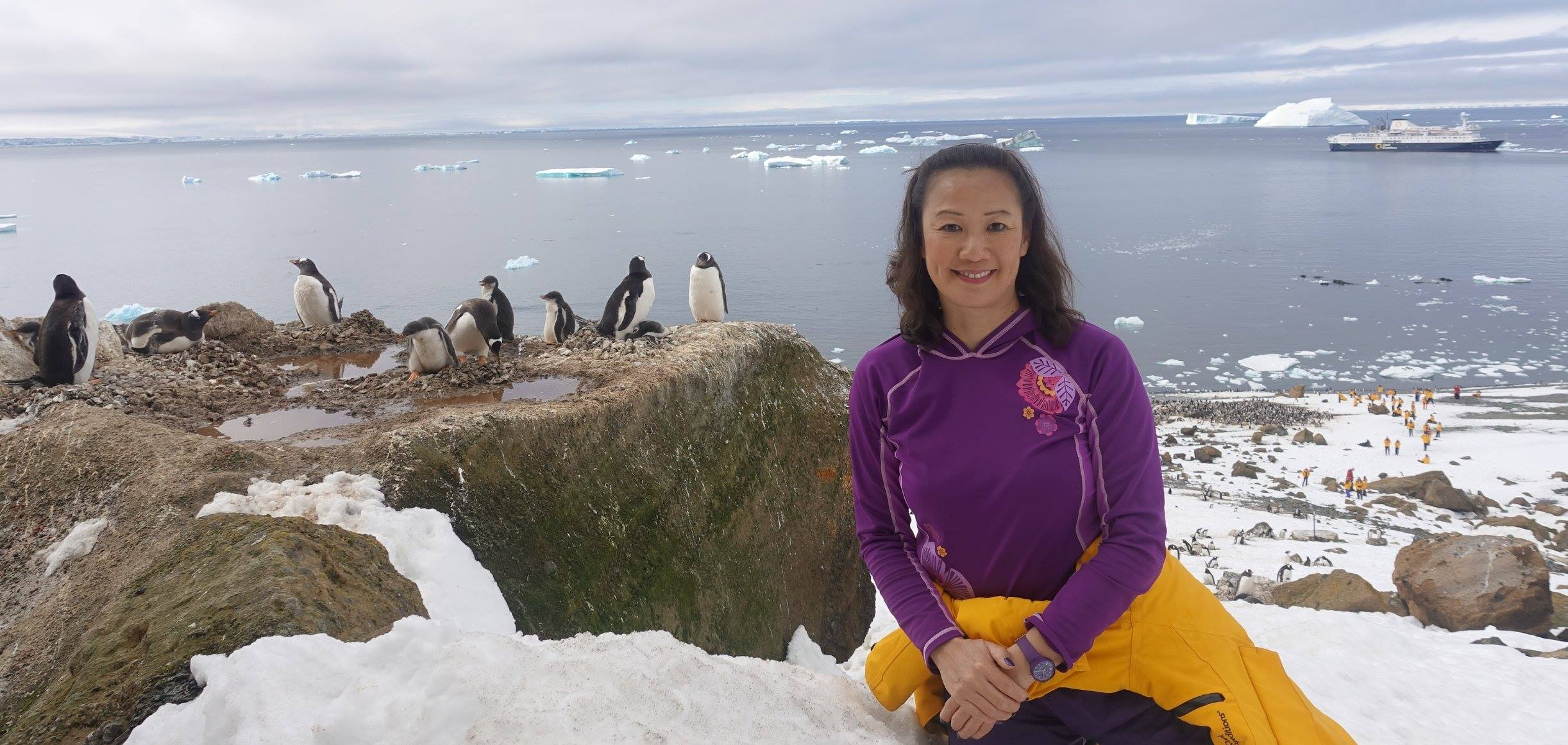 May Lee enjoys a quiet moment with a colony of Gentoo penguins perched high above an Antarctic bay, the Ocean Endeavour in the background
