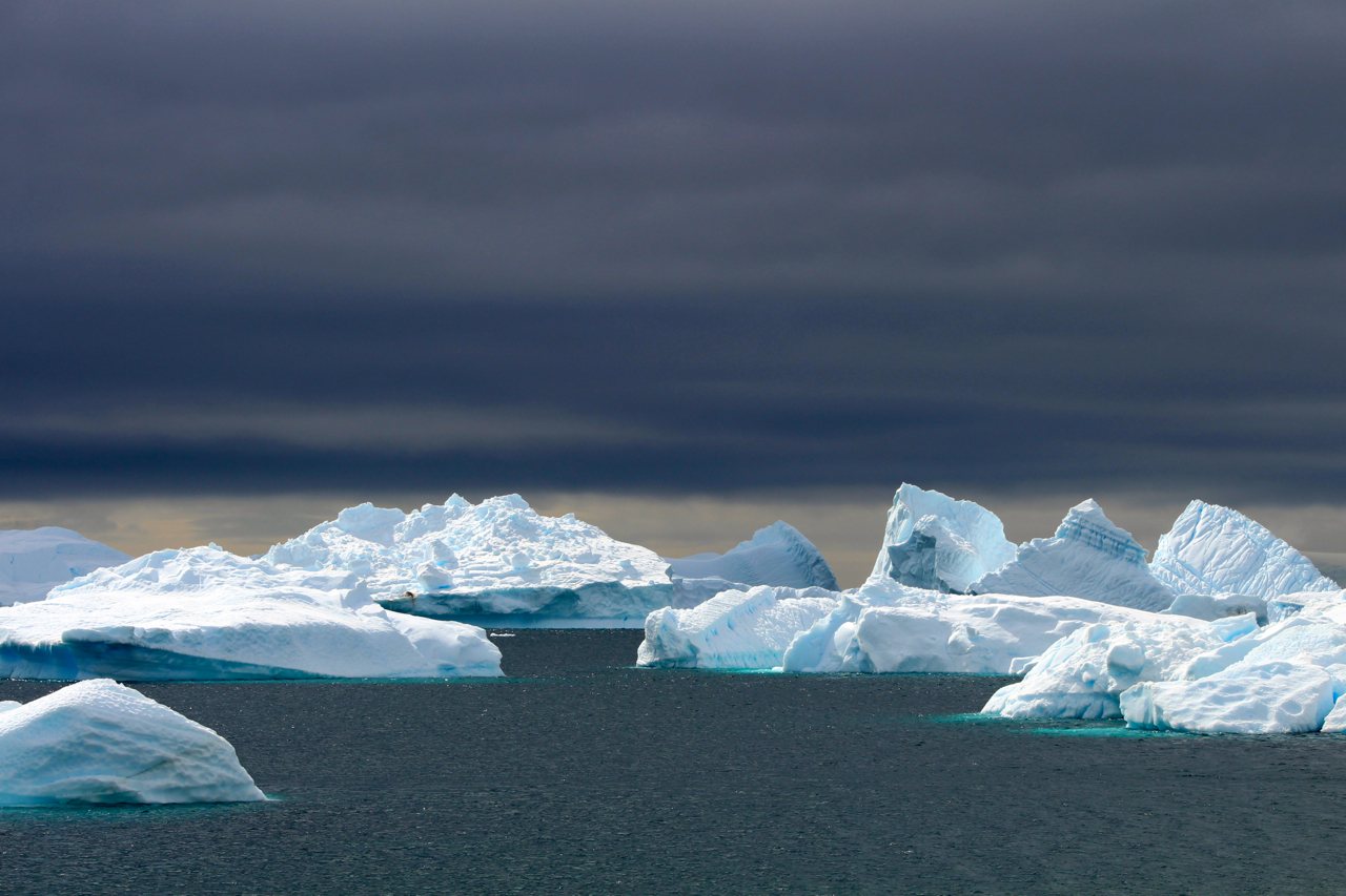 Icebergs, scarred by calving from massive glaciers, then shaped by salt water and sunshine, create ethereal seascapes that change by the minute, all set against dramatic Antarctic skies. Photo: Miranda Miller