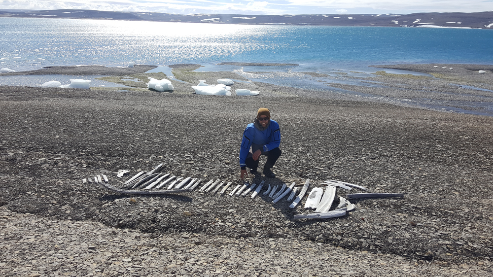 Arctic Watch Wilderness Lodge guide Tessum Weber alongside an ancient Thule sled made of whale bone. Photo Katie Palmer