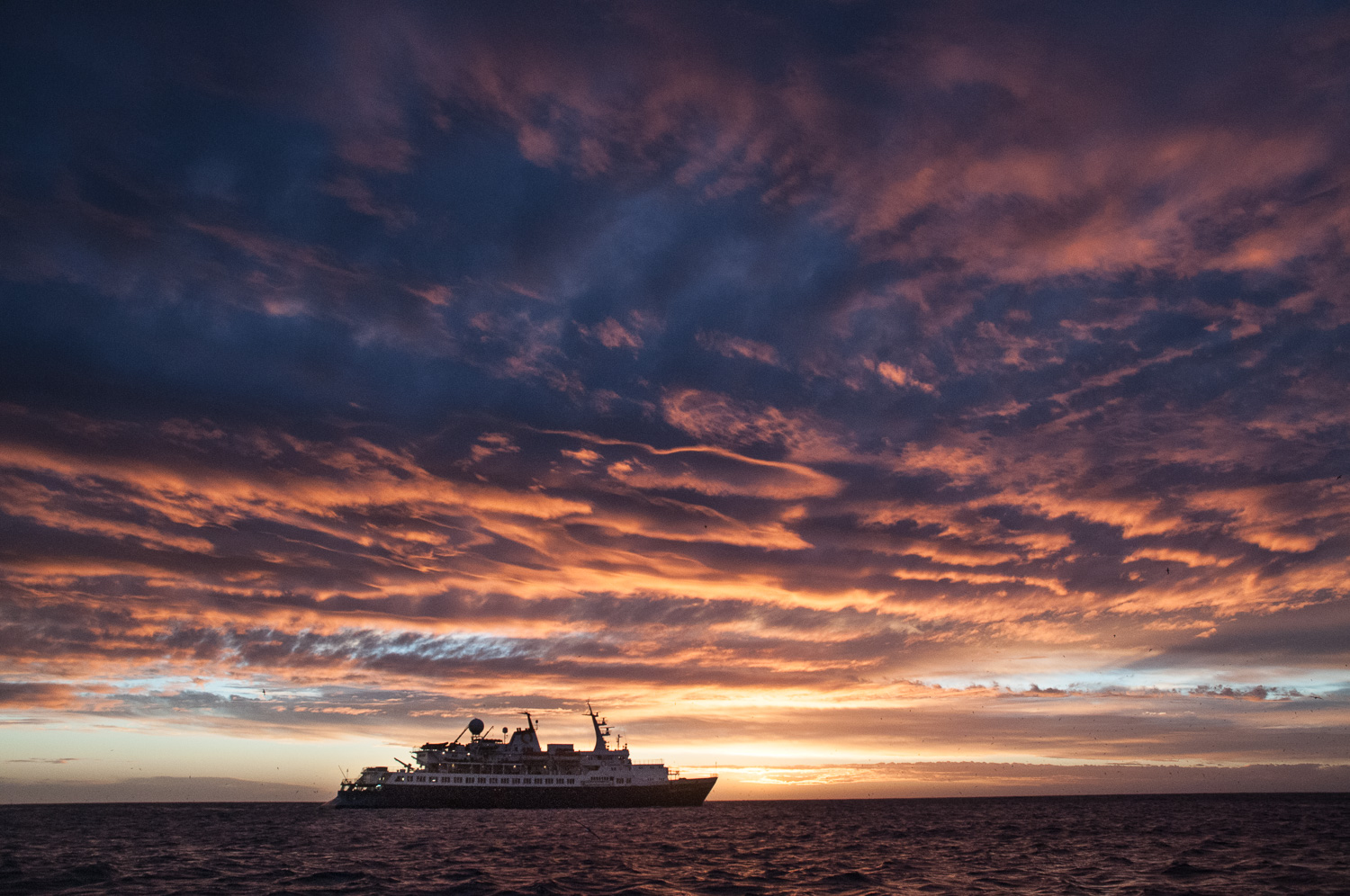 Oranges and pinks and purples illuminate the clouds over the new and improved Ocean Adventurer and the horizon beyond.  Photo credit Phil Wickens
