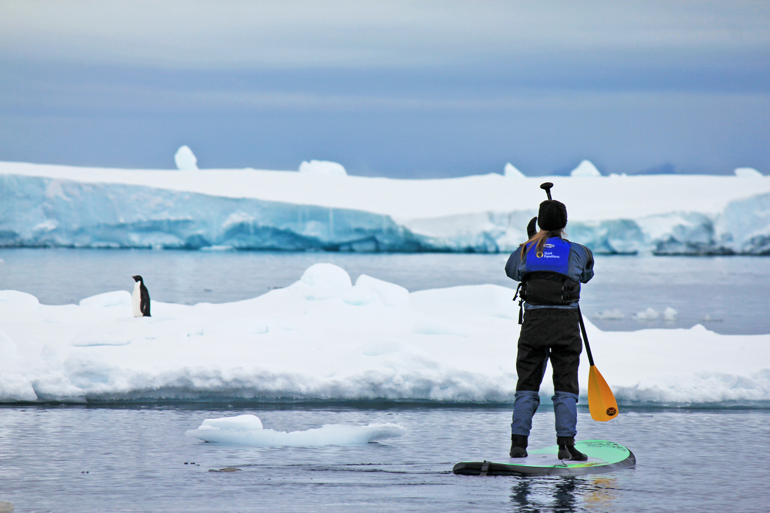 Passenger pictured paddleboarding in Antarctica