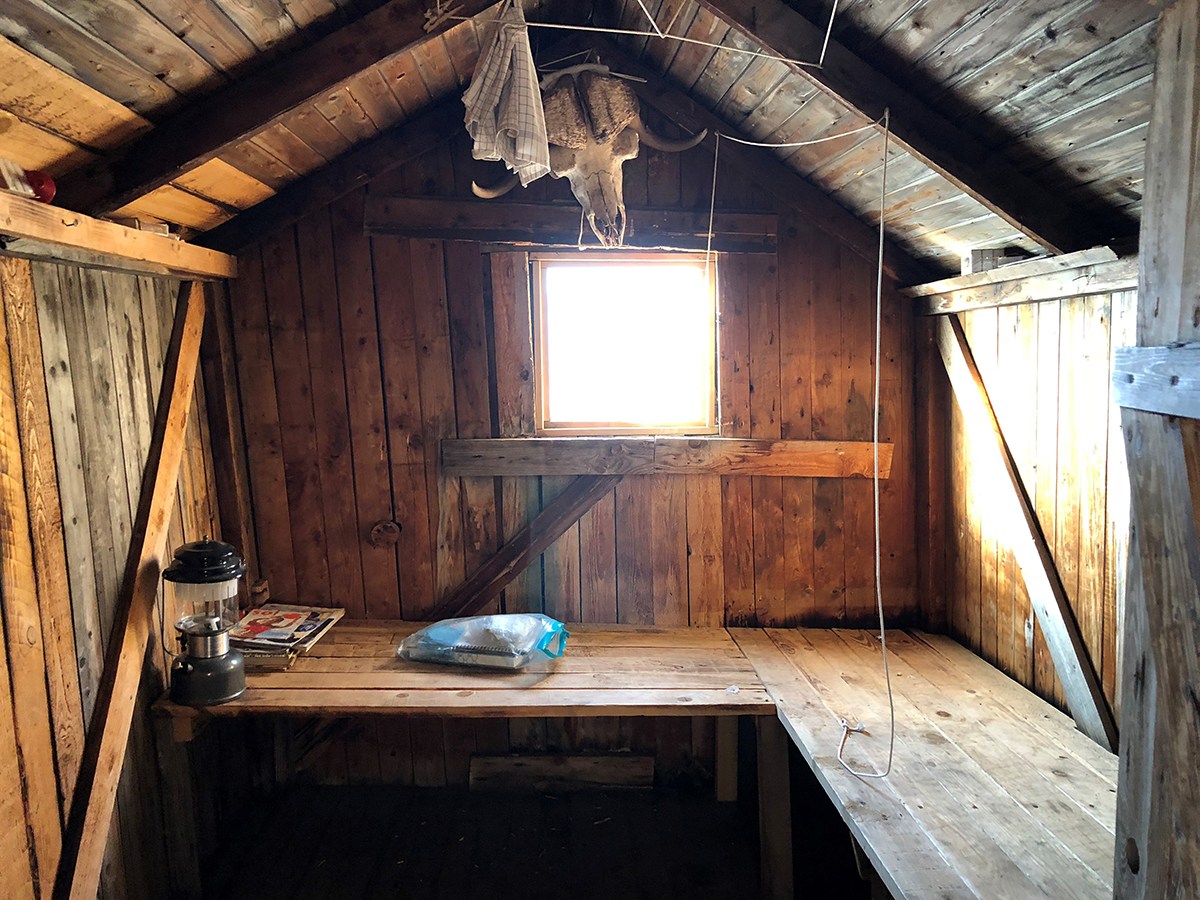 Interior of abandoned trapper hut at Blomster Bugt from the 1900's. Photo by Acacia Johnson