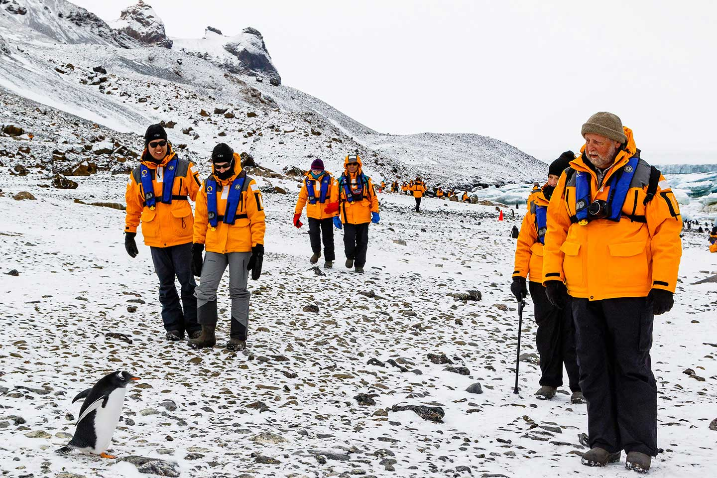 Hiking in Antarctica is an opportunity for travelers to plant their feet on the 7th Continent