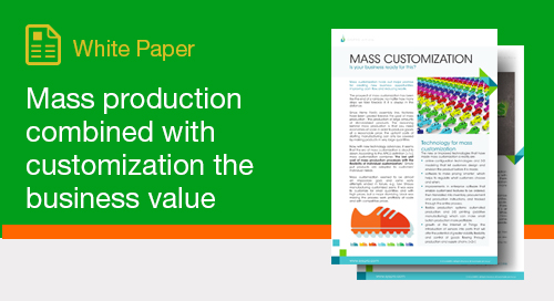 Mass Production Combined with Customization the Business Value