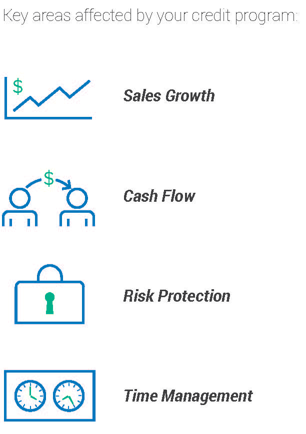 graphic that shows themes of article: Sales Growth, Cash Flow, Risk Protection, Time Management