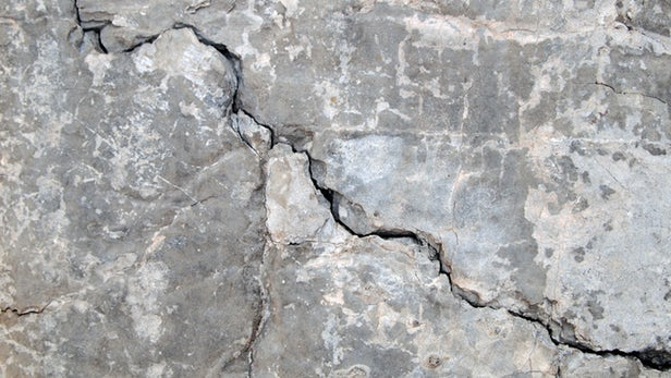 The secret ingredient in this self-healing concrete is fungus