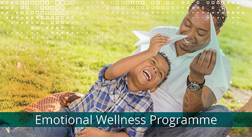 Emotional Wellness Programme