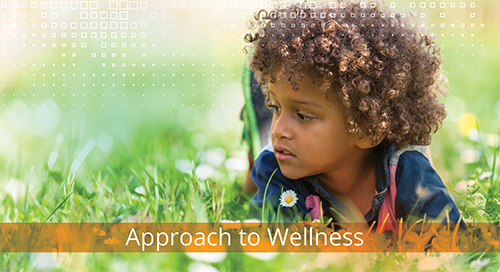 Approach to Wellness Programme