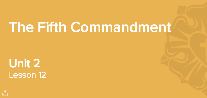 Lesson 12 - The Fifth Commandment | CPH 60-Week Confirmation Curriculum